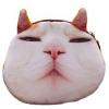 【特集】かわいい猫柄 プレゼントにもおすすめポーチ&バッグ ランキング