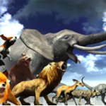 【PS4/PS3】超リアルで面白すぎる!おすすめ動物ゲーム(隠れた名作集)