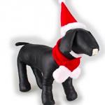 ペットにおすすめ!クリスマス犬用コスチュームベストセレクション